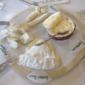 Delicious cheese tasting for students