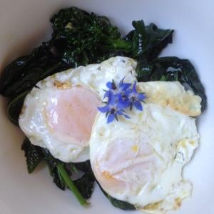 Spring = eggs. Finally!